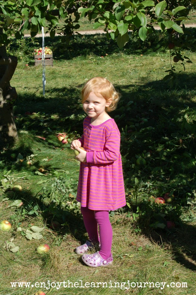 Trip to the Apple Orchard