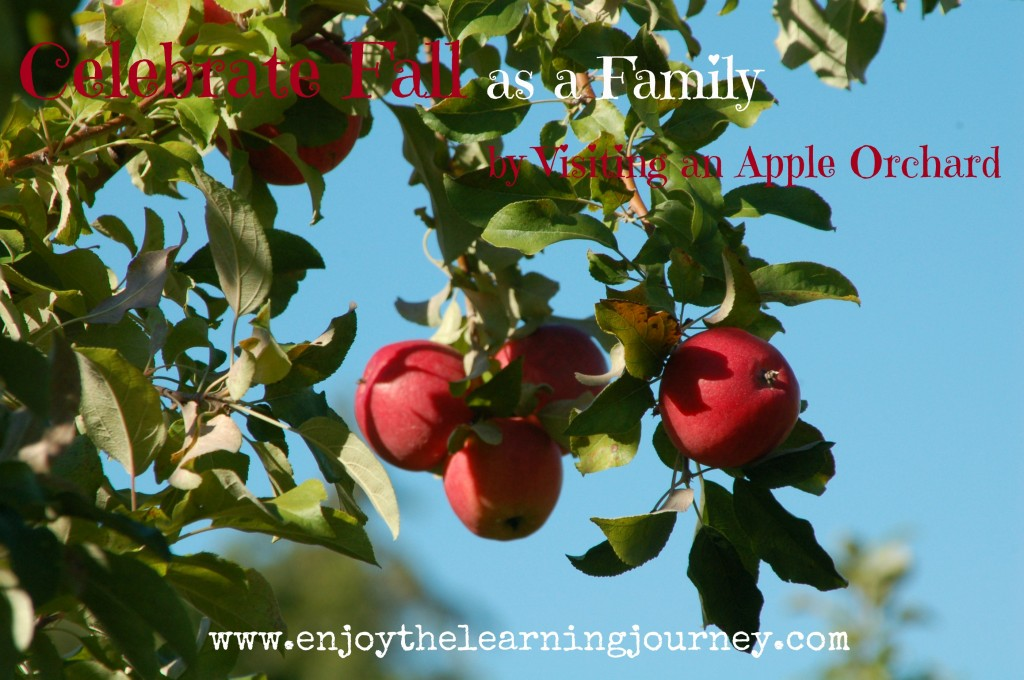 Celebrate Fall as a Family by Visiting an Apple Orchard