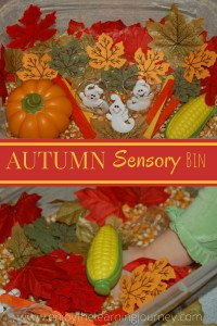 Autumn Sensory Bin for Preschoolers