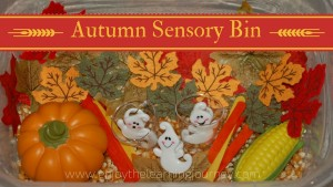 Your children will explore, sense and discover the autumn sensory bin filled with materials perfect for the fall season!