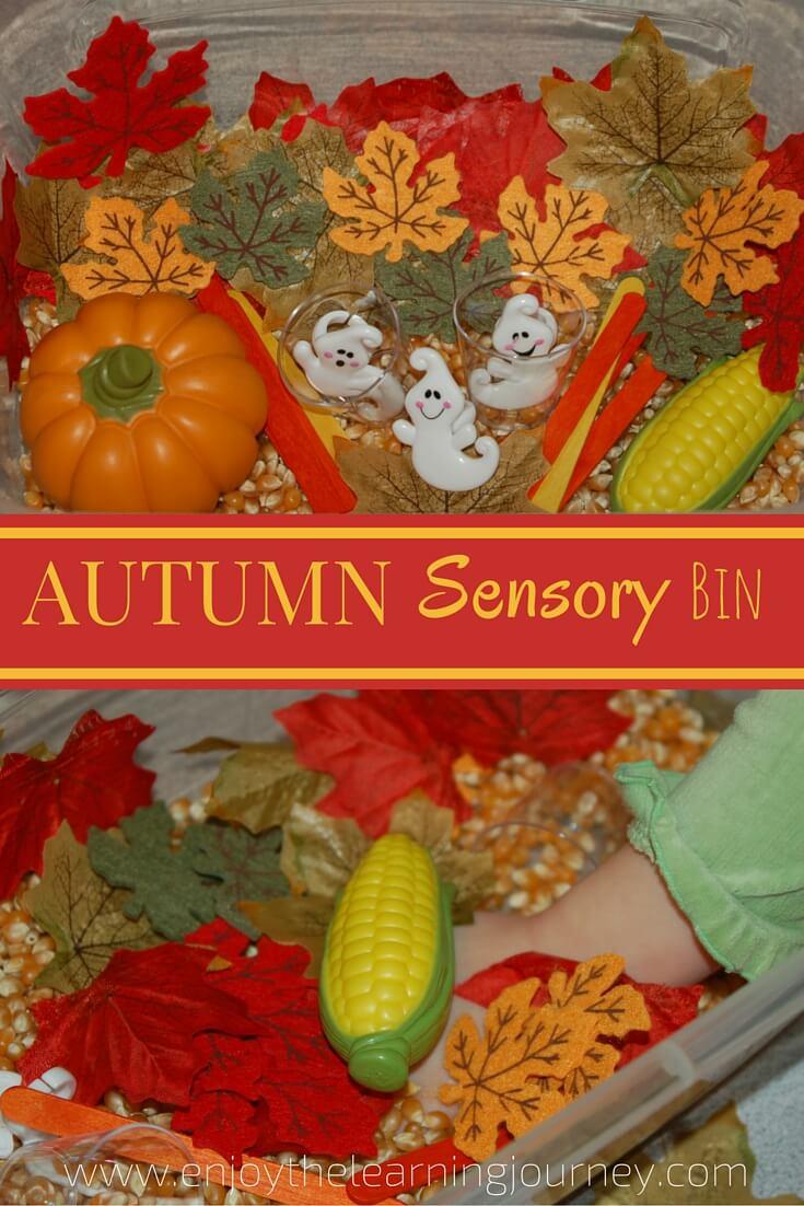 Autumn Sensory Bin for Preschoolers