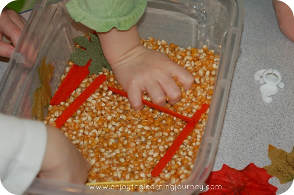 Autumn Sensory Bin for Preschoolers - explore, sense, discover - perfect for kids this fall season!