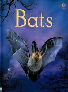 Usborne Bats