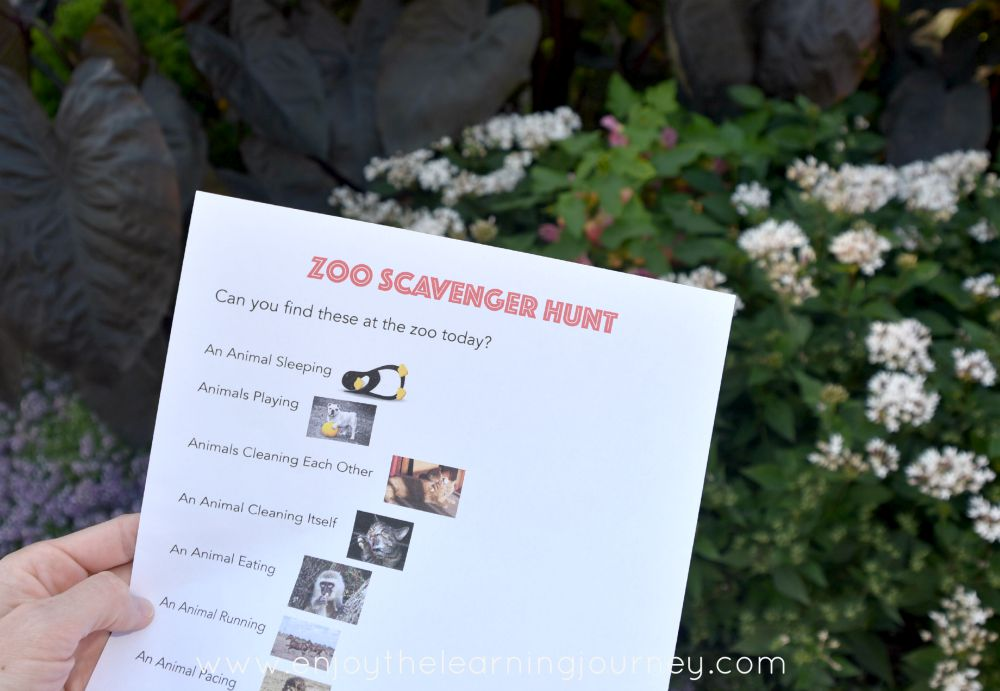 Take your kids on an adventure with a Zoo Scavenger Hunt! FREE printable checklists!
