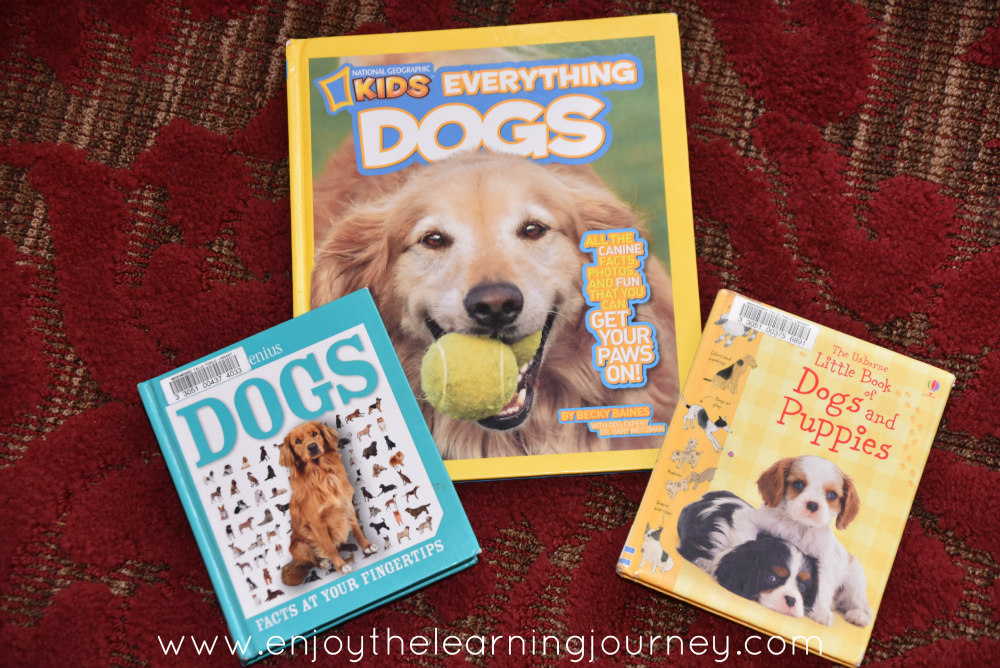 Three Names by Patricia MacLachlan is a great read and will be a wonderful Five in a Row {FIAR Volume 2} Unit Study of Dogs and the Prairie in your homeschool.
