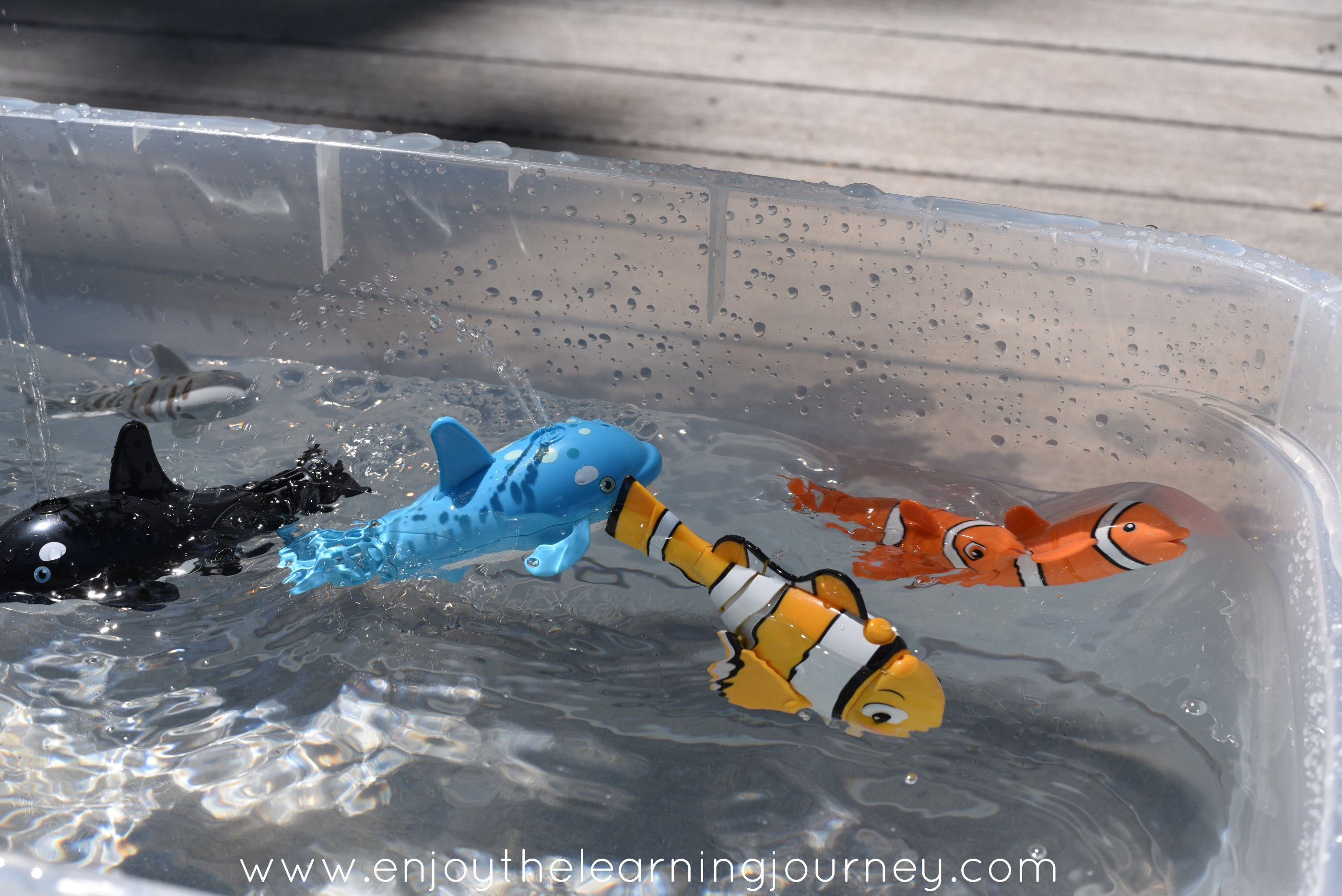 Lil' Fishys are perfect for summer water play to excite and engage your children! From preschoolers to elementary aged children, Lil' Fishys toys can be used with water tables, small or large pools, in the bathtub or with the available fish bowl.